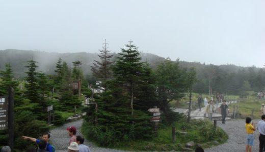 北八ヶ岳ロープウェイで空中散歩!さらに自然庭園「坪庭」を散策♪