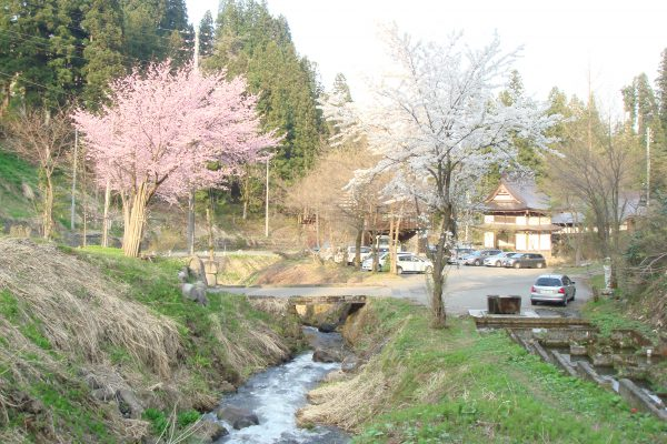 oosawayama-onsen-oosawakan20