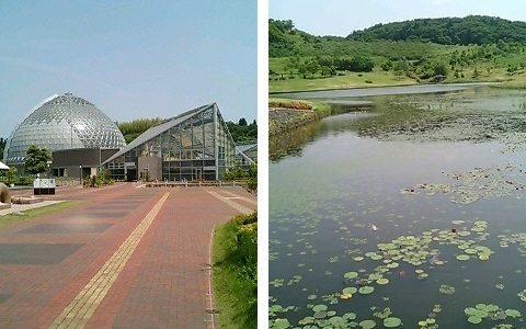 新潟県立植物園 雪国新潟でも一年を通じて緑が楽しめる場所