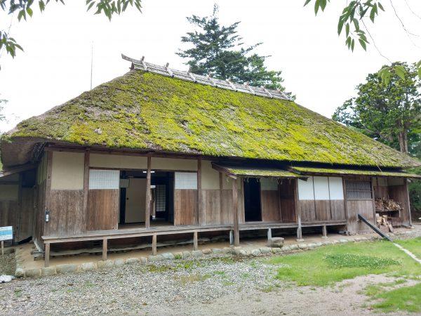 wakabayashi17