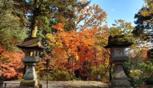 泉恵園:大庭園にして新潟市秋葉区の紅葉の名所