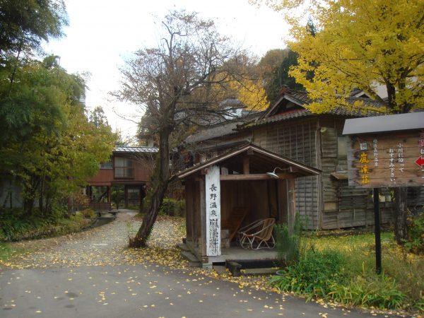 20071110rankeiso (1)