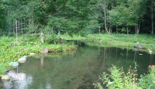 尾瀬沼の縮小版「ミニ尾瀬公園」そして「山びこ山荘」