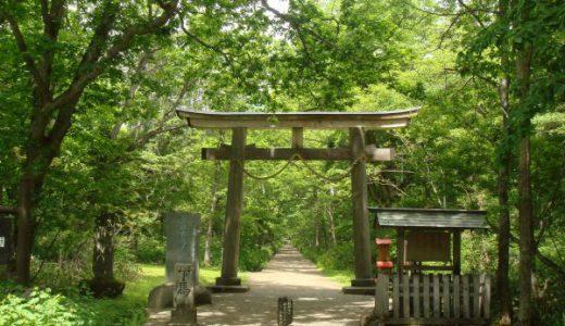 戸隠神社 奥社 九頭龍社 参道の杉並木が圧巻です!