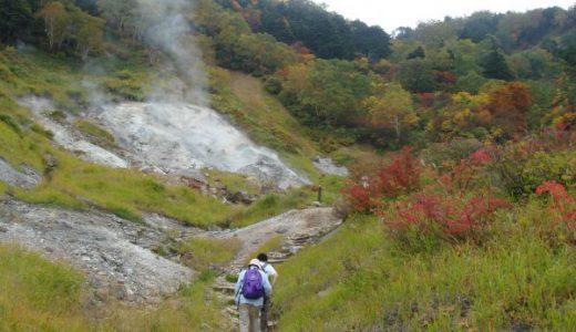 蓮華温泉 蓮華七湯で自然の森遊歩道の疲れを癒やす in 糸魚川