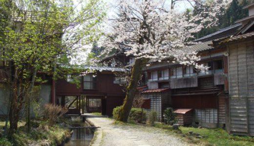 越後長野温泉【嵐渓荘】桜の咲く季節の水芭蕉も綺麗でした