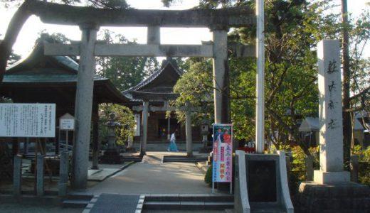 かわいい猫「おうじ」が 「荘内神社」でお出迎え~「大宝館」