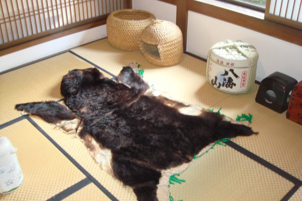 oosawayama-onsen-oosawakan06