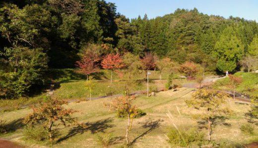 中浦ヒメサユリ森林公園はキャンプが格安で楽しめる!釣りや遊具も完備!