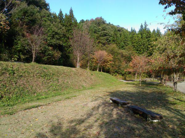 nakaura-himesayuri02
