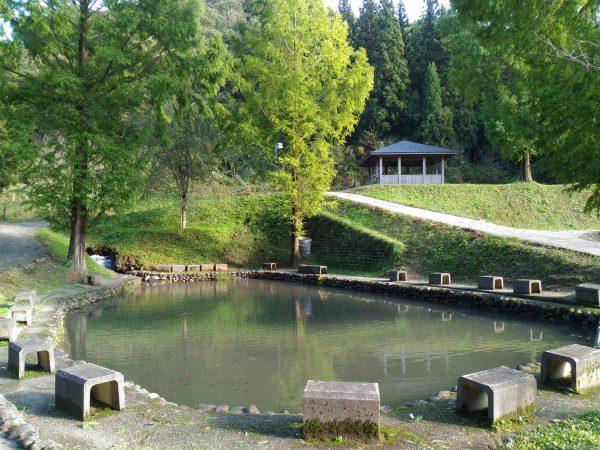 nakaura-himesayuri16