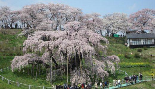 三春の滝桜 葛飾北斎の浮世絵がそのまま桜になったよう