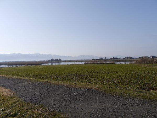 fukushimagata-20170310-09