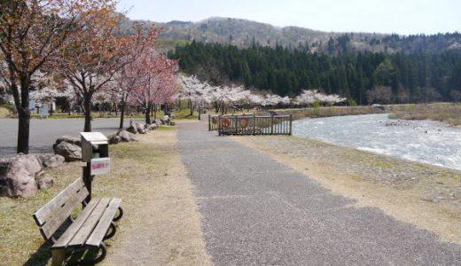 滝谷森林公園キャンプ場 満開の桜に魅せられて