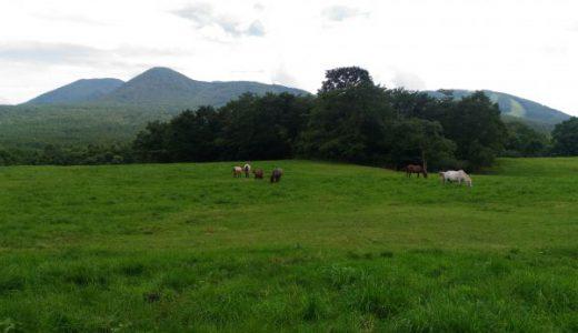 戸隠牧場 乗馬やキャンプが楽しめちゃうんです