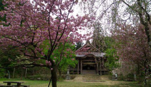 二王子神社キャンプ場 神社好きキャンパーにはたまらない!