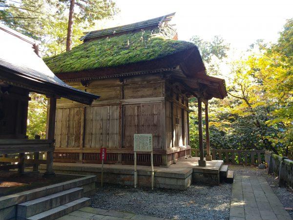 yahiko-shrine-kiku-matsuri (10)