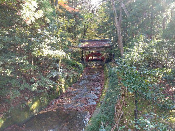 yahiko-shrine-kiku-matsuri (11)