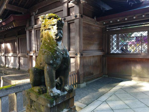 yahiko-shrine-kiku-matsuri (3)