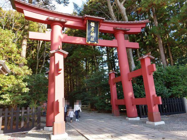 yahiko-shrine-kiku-matsuri (6)