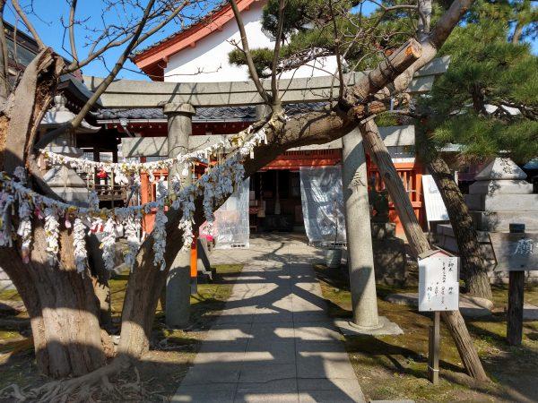 minatoinari-shrine2 (6)