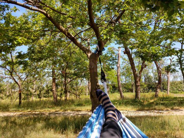 hang-a-hammock-15