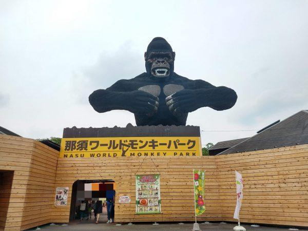 monkey-park-1