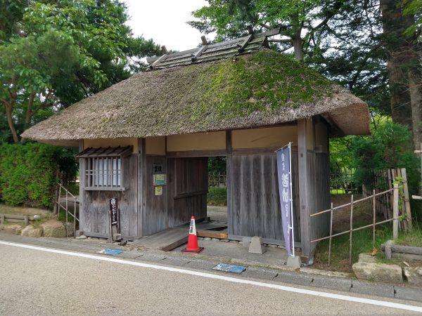 wakabayashi2