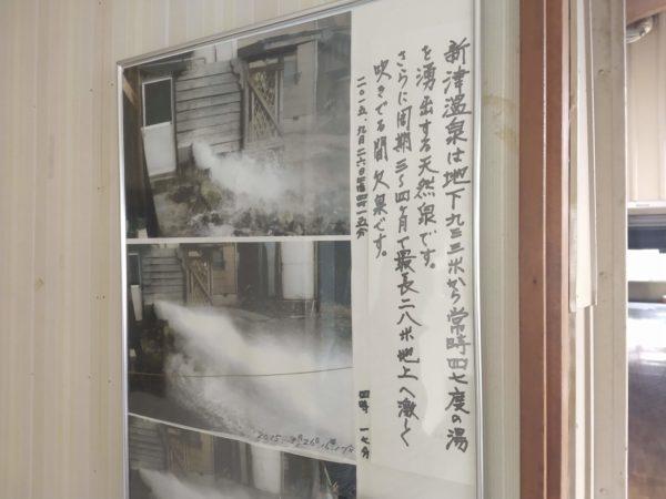niitsu-spring (10)